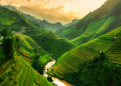 ICS Vietnam