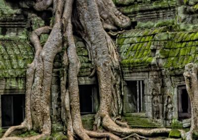 ICS Cambodia