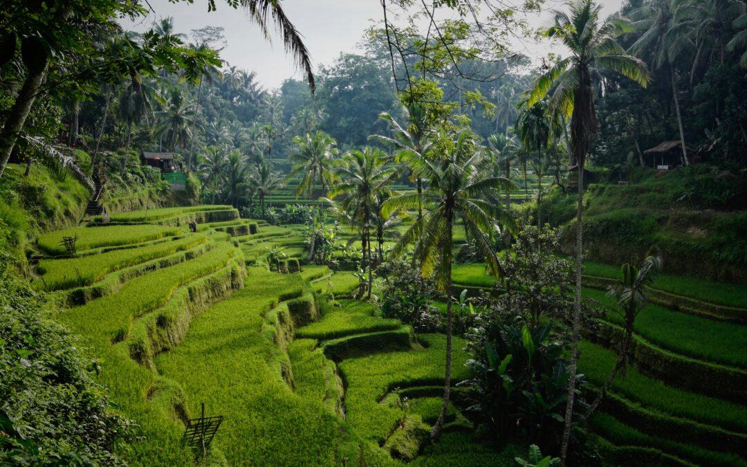 Top Insider Travel Tips for 2021