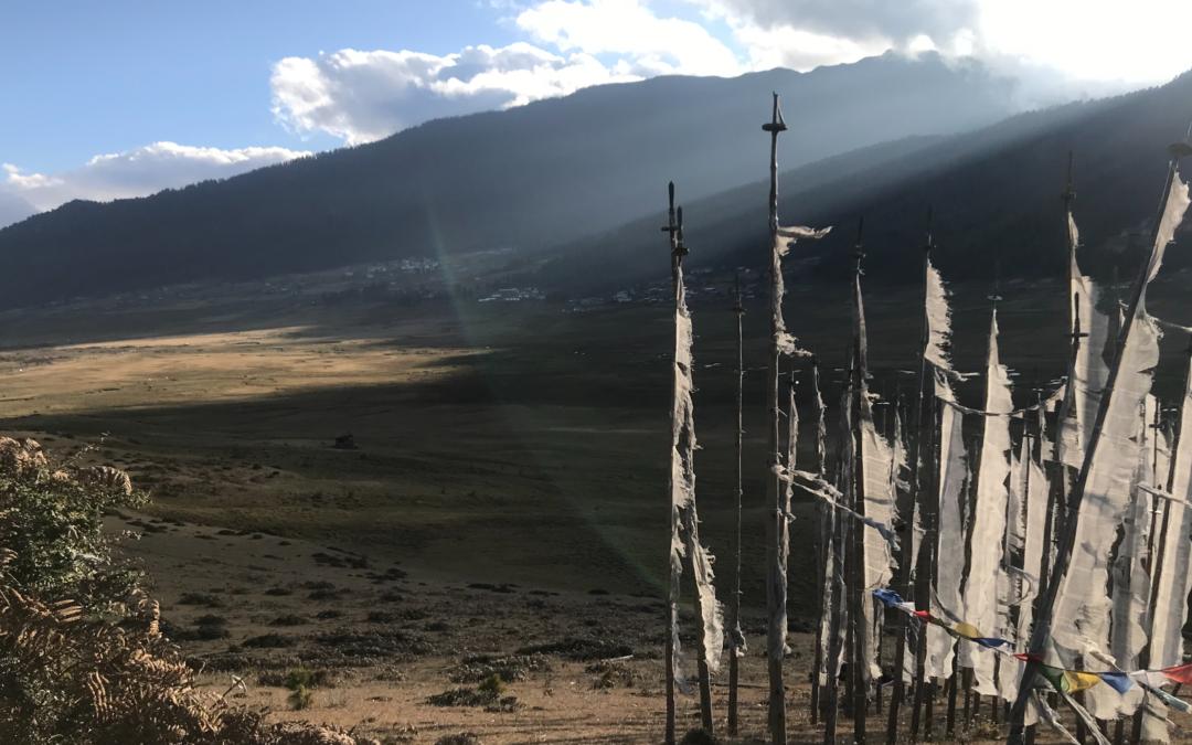 Bhutan's Birds from Heaven
