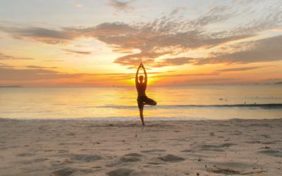 Zen-inducing Asian wellness retreats